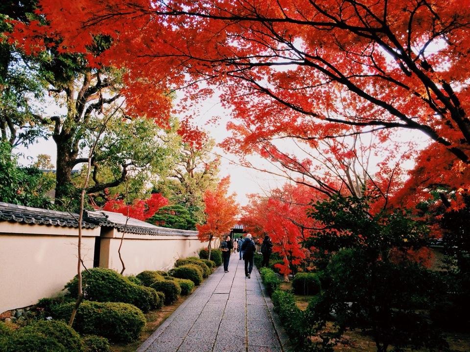 Daitoku-ji Temple and garden kyoto (1)