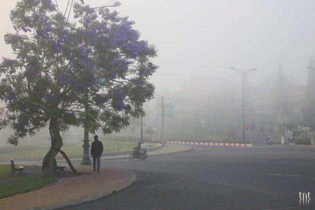 dalat photos cloudy (12)