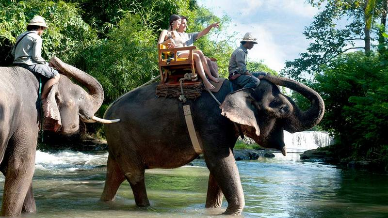 Bali-zoo-travel-to-bali-indonesia