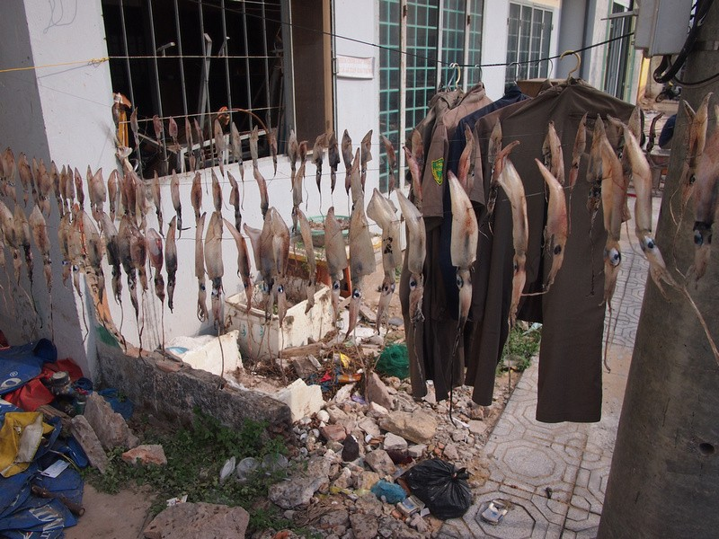 Phu Quoc Island Drying squid and clothes