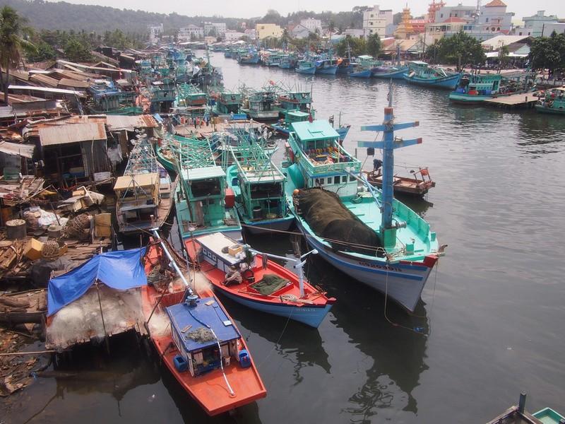 Phu Quoc Island Duong Dong fishing fleet