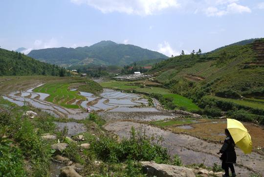 Sapa northwest vietnam
