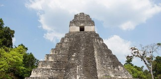 The-ruins-of-Tikal