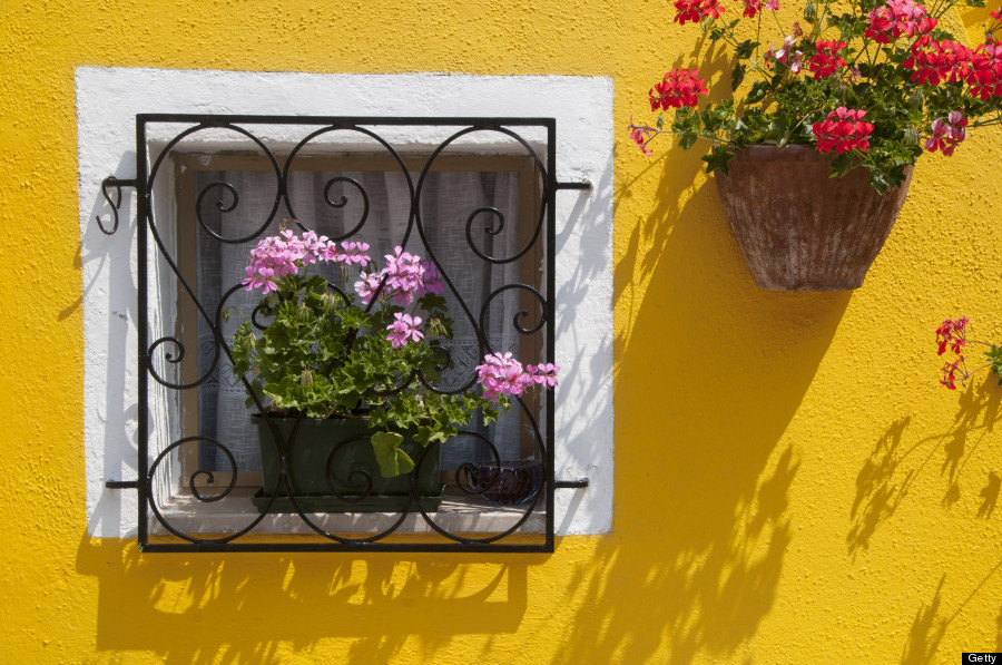 Italy, Veneto, Venice, Burano, colourful window detail