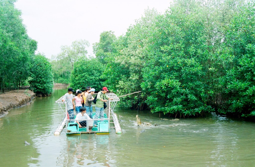Interesting crocodile fishing activity