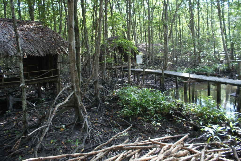 Or take a rest in the huts in the forest (Photo: worldteacher-andrea)