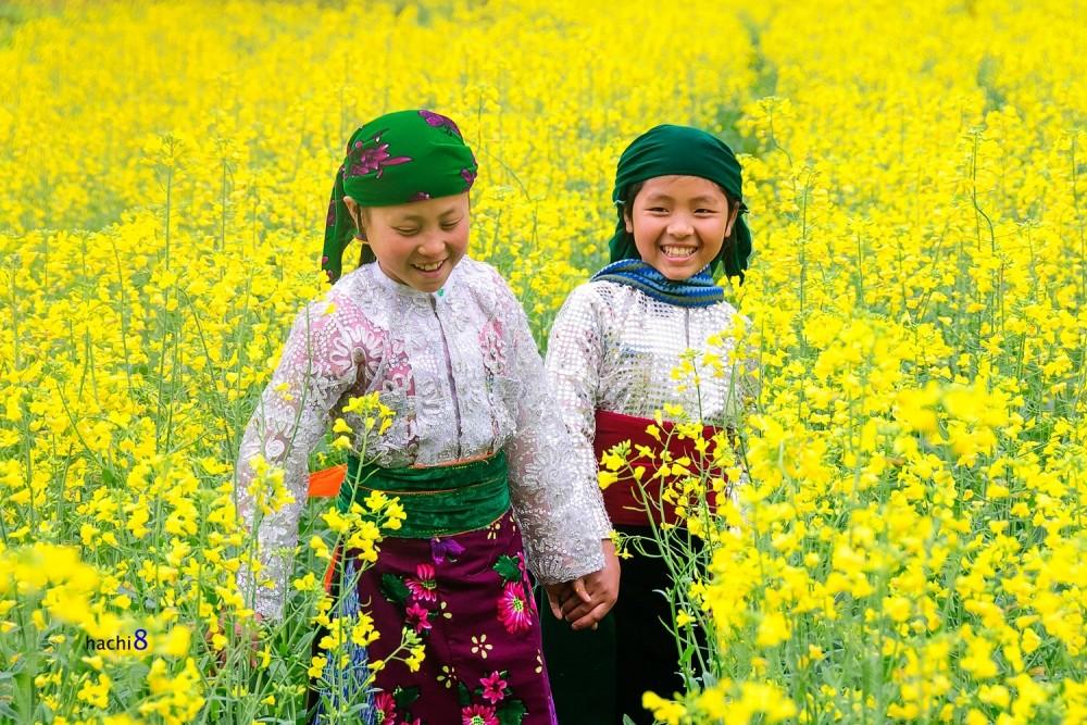 flowers Ha Giang bloom season northwest Vietnam5