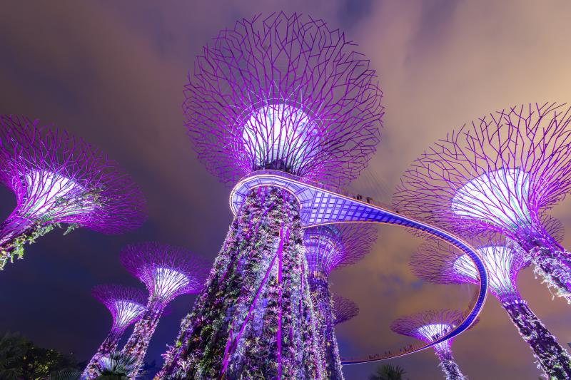 Super trees at Gardens by the Bay lit up at night Gardens by the Bay is Singapore's latest prestige project and definitely worth a visit.