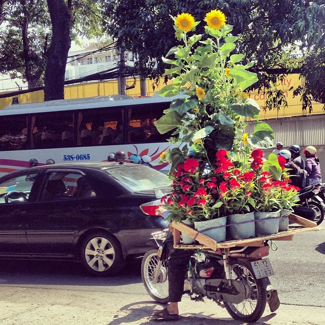 Tet flower delivery