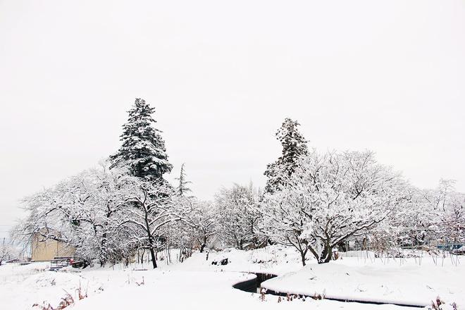snow-in-kitakata3jpg