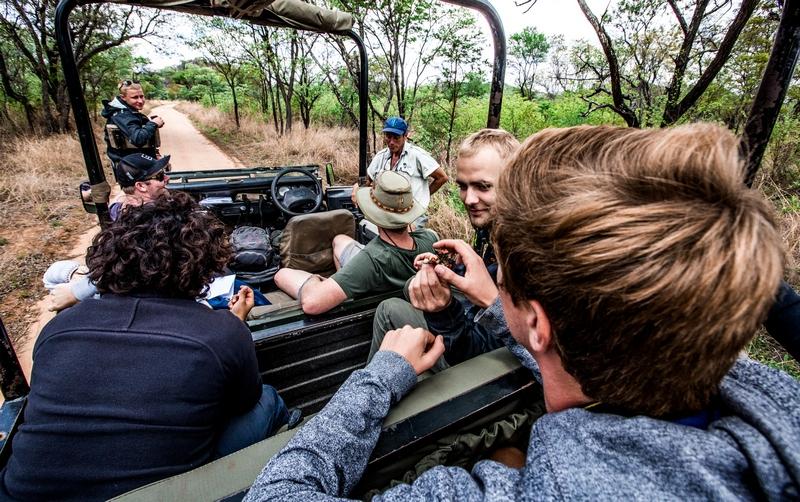 spotting-for-rhinos