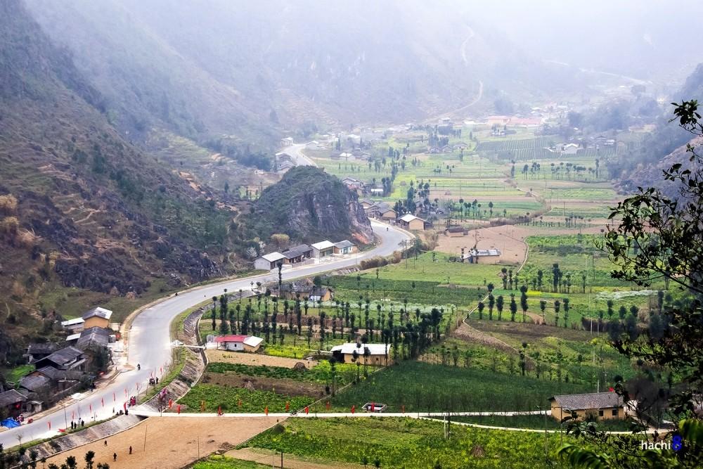 valley Ha Giang bloom season northwest Vietnam6