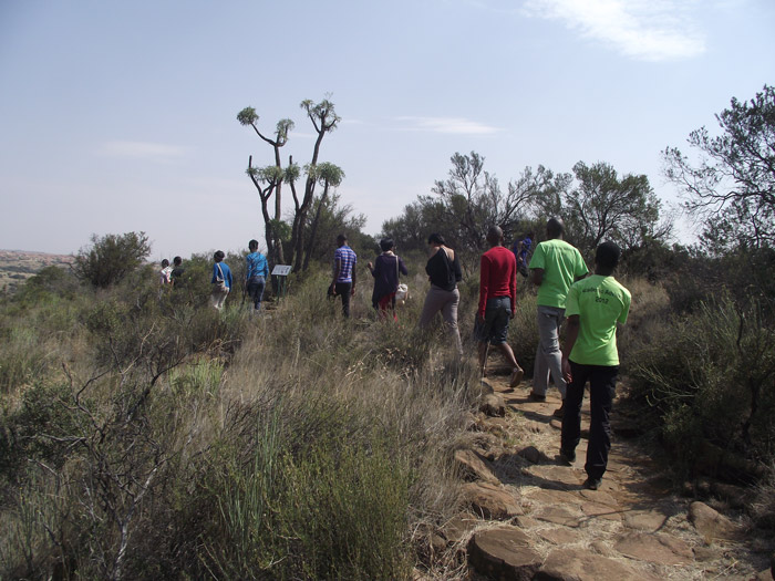 We encourage all visitors to walk the two Motshetshe and garden view trails, which will show you the beauty and diversity of our Free State plants.