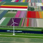 10+ stunning photos of tulip fields in the Netherlands