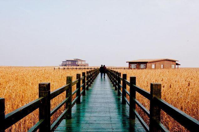 Chongming Island