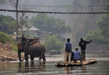 Elephant tours and bamboo rafting in Thailand CREDIT ALAMY