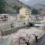 Yamagata travel blog — The fairyland of cherry blossoms and Ramen noodles