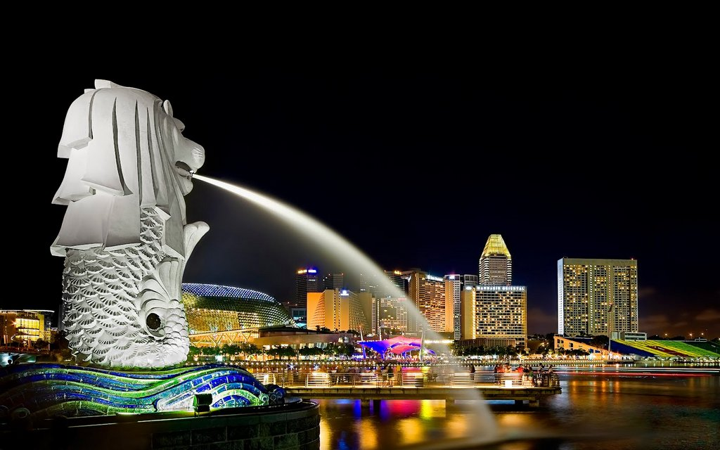 Contact Us for Van Charter with Driver/Chauffeur for Pictures of merlion in singapore