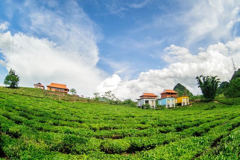Moc Chau Arena Village is located in Moc Chau farmtown