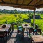 Ubud travel guide — 5 activities you should not miss while visiting Ubud, Bali