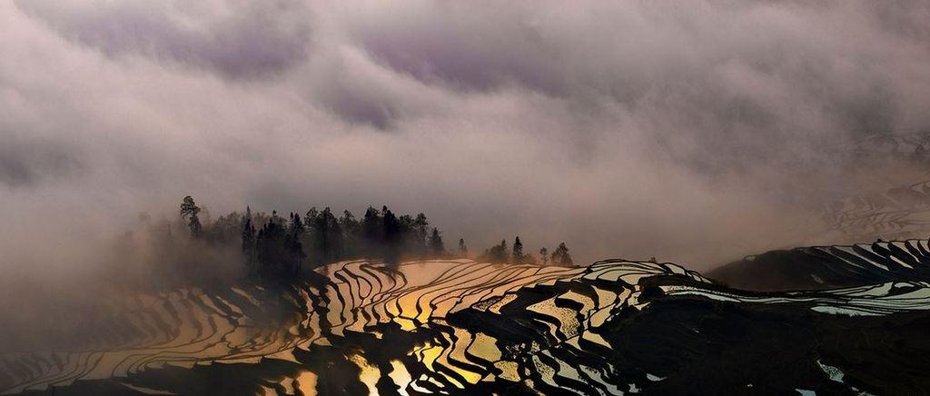 Rice Terraces of Yuanyang 2