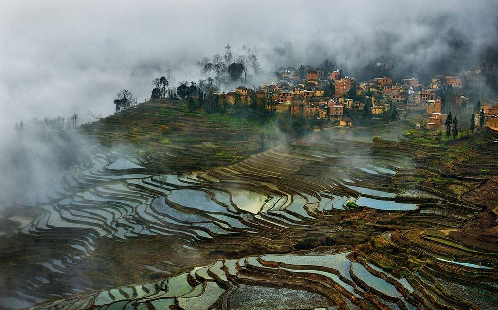Rice Terraces of Yuanyang 5