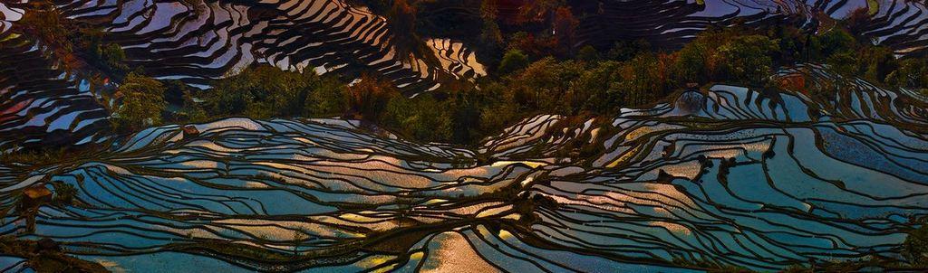 Rice Terraces of Yuanyang 8