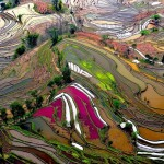 10+ stunning photos show spectacular rice terraces of Yuanyang
