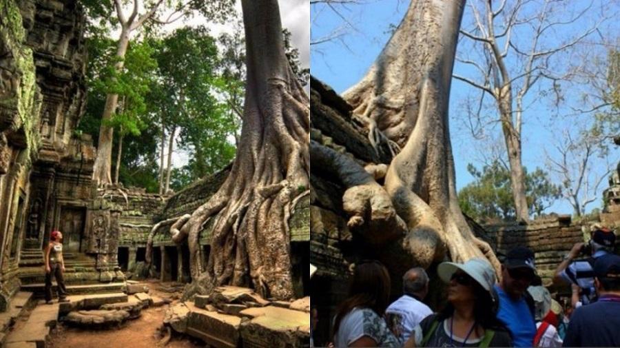 Siem Riep - Cambodia
