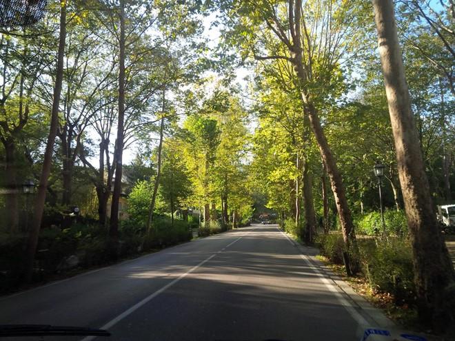 Tuscany-Italy-beautiful-road