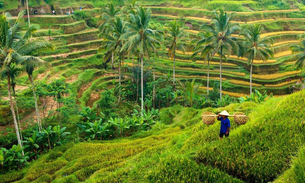 Ubud, Indonesia 10 most popular place