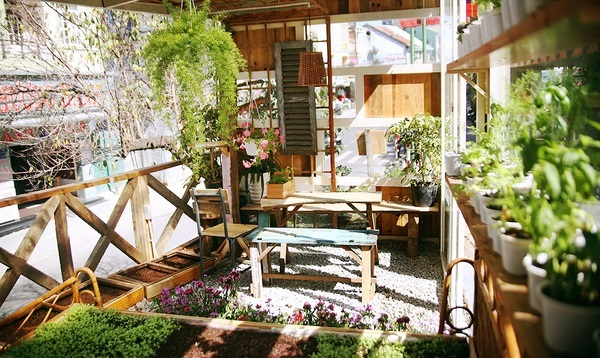An cafe with many vegetables, plants and flowers. Photo: kenh14