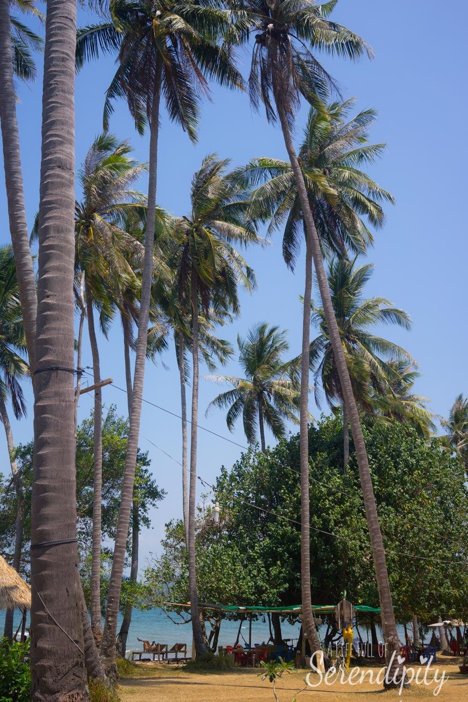 beautiful scenery koh tonsay cambodia