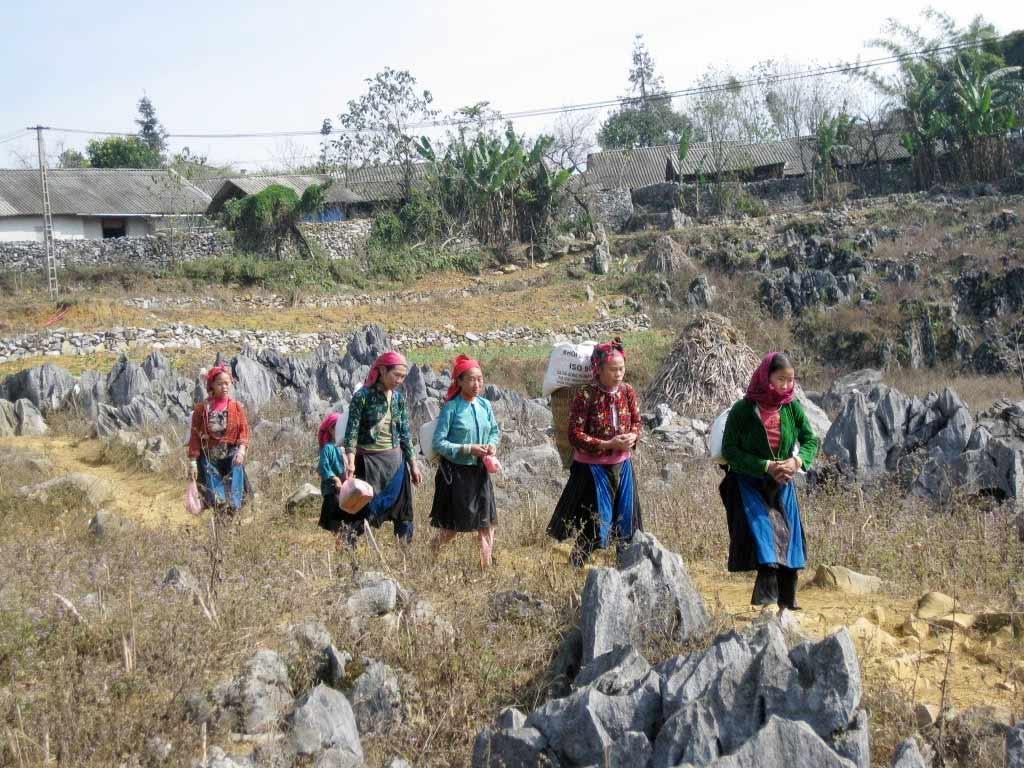 ethnic minority children in Ha Giang