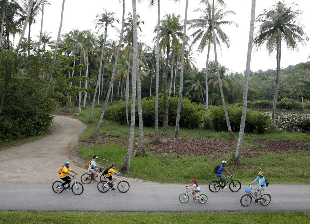 A cycling trip in Pulau Ubin could be a remarkable experience Photo: todayonline.com