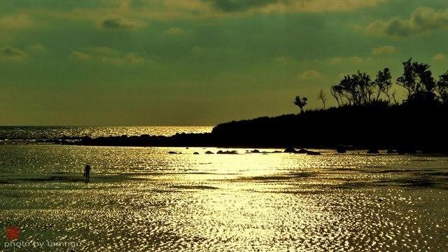 dawn in phu quy