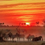 5 best places for safari sundowner in Botswana