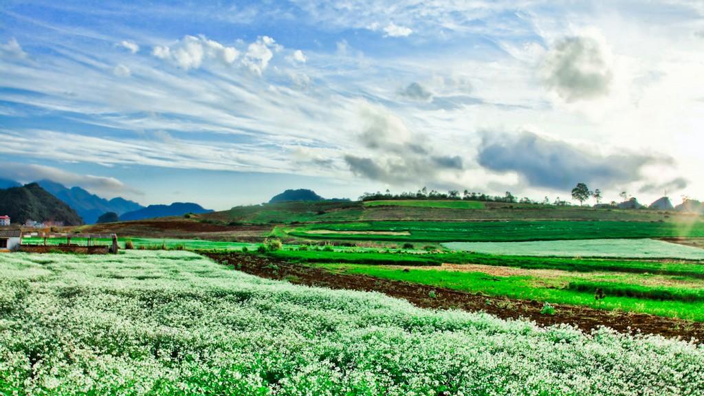 Photo: tripyco.com