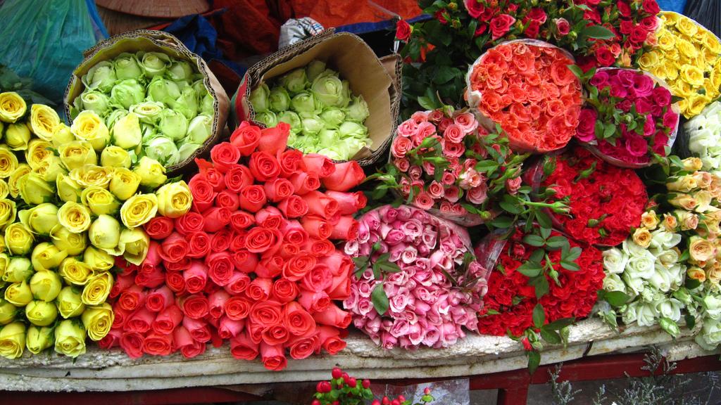 plum flowers at quang ba flowers market hanoi vietnam 3