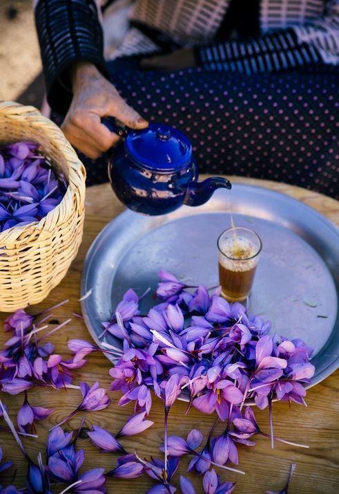 saffron tea prepared with freshly picked threads 2