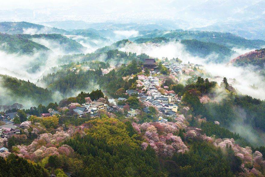 Land of mist Photo: Masayuki Yamashita