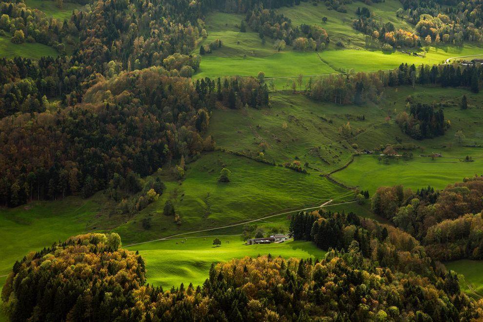 Photograph by Slawek Staszczuk/Alamy Stock Photo