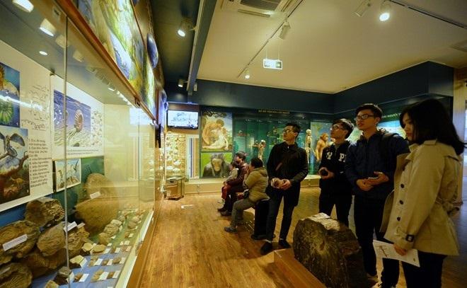 the national museum of nature in hanoi viet nam