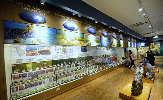 the national museum of nature in hanoi vnam
