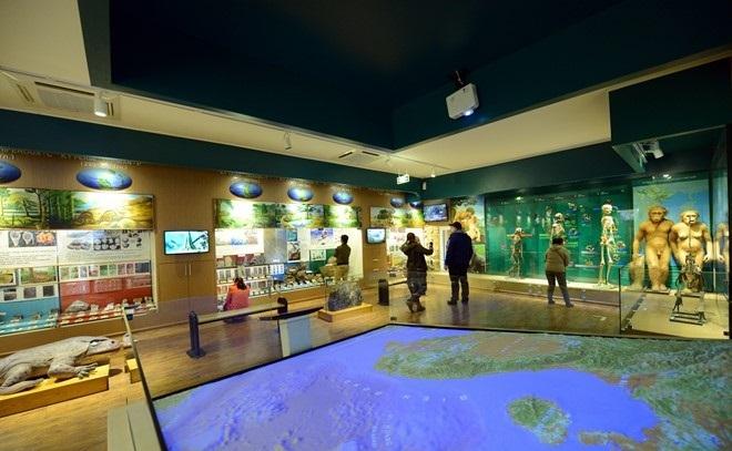 the national museum of nature in vietnam in hanoi vietnam