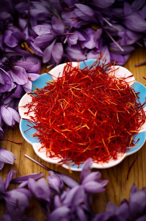 the saffron is quickly separated, dried 2
