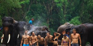 coolest things to do in chiang mai
