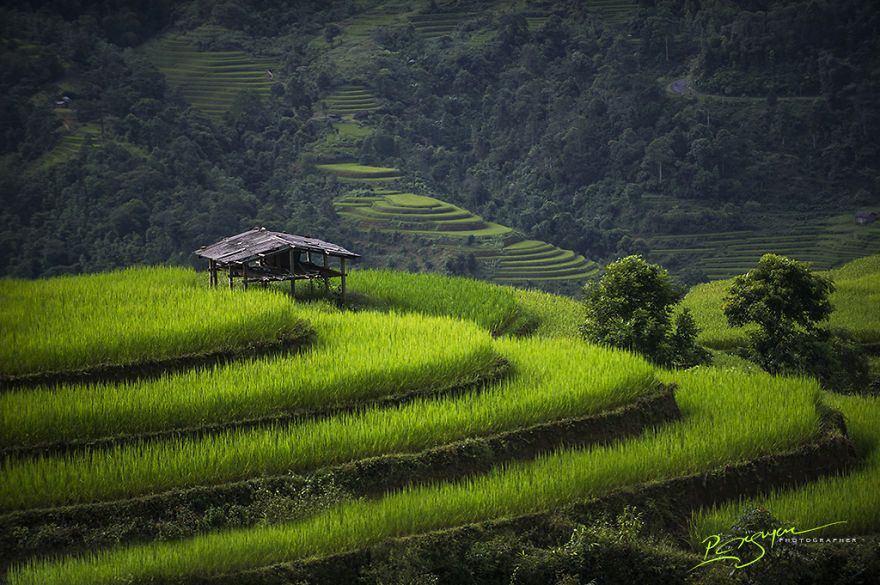 17 captivating pictures of vietnam by Nguyen Vu Phuoc 10