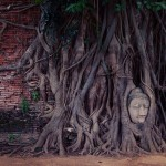 Ayutthaya — A must-go destination in Thailand