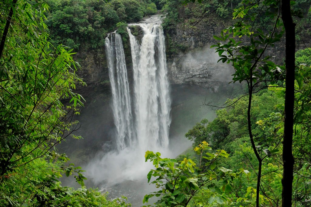 Dong Hua Sao National Biodiversity Conservation Area - www.wanderant.com